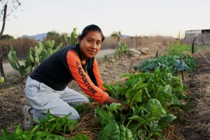 Soledad, one of the women in our program, working on her vegetable plot.