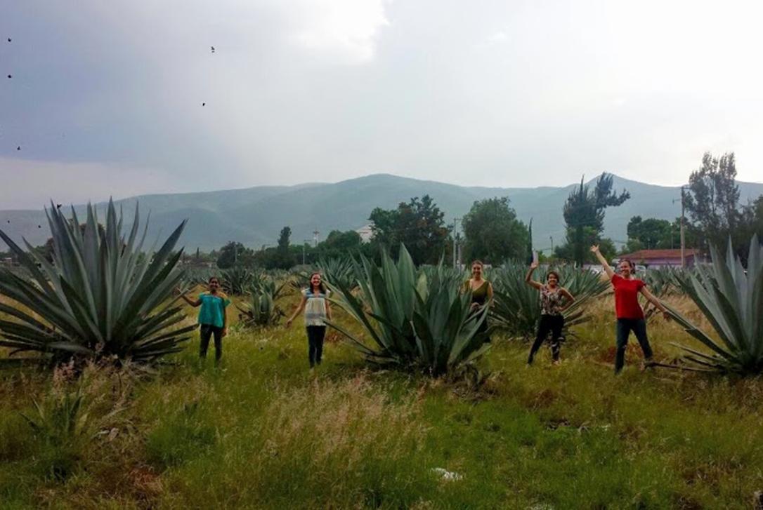 An En Vía team outing to the town festival in Santo Domingo Tomaltepec.
