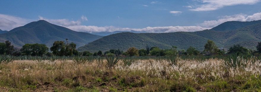 A scene of the mountains and a field in Santo Domingo Tomaltepec.