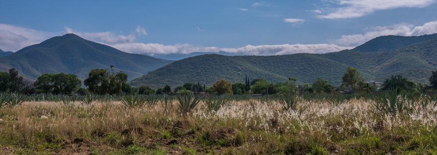 A scene of the mountains and a field in Santo Domingo Tomaltepec.