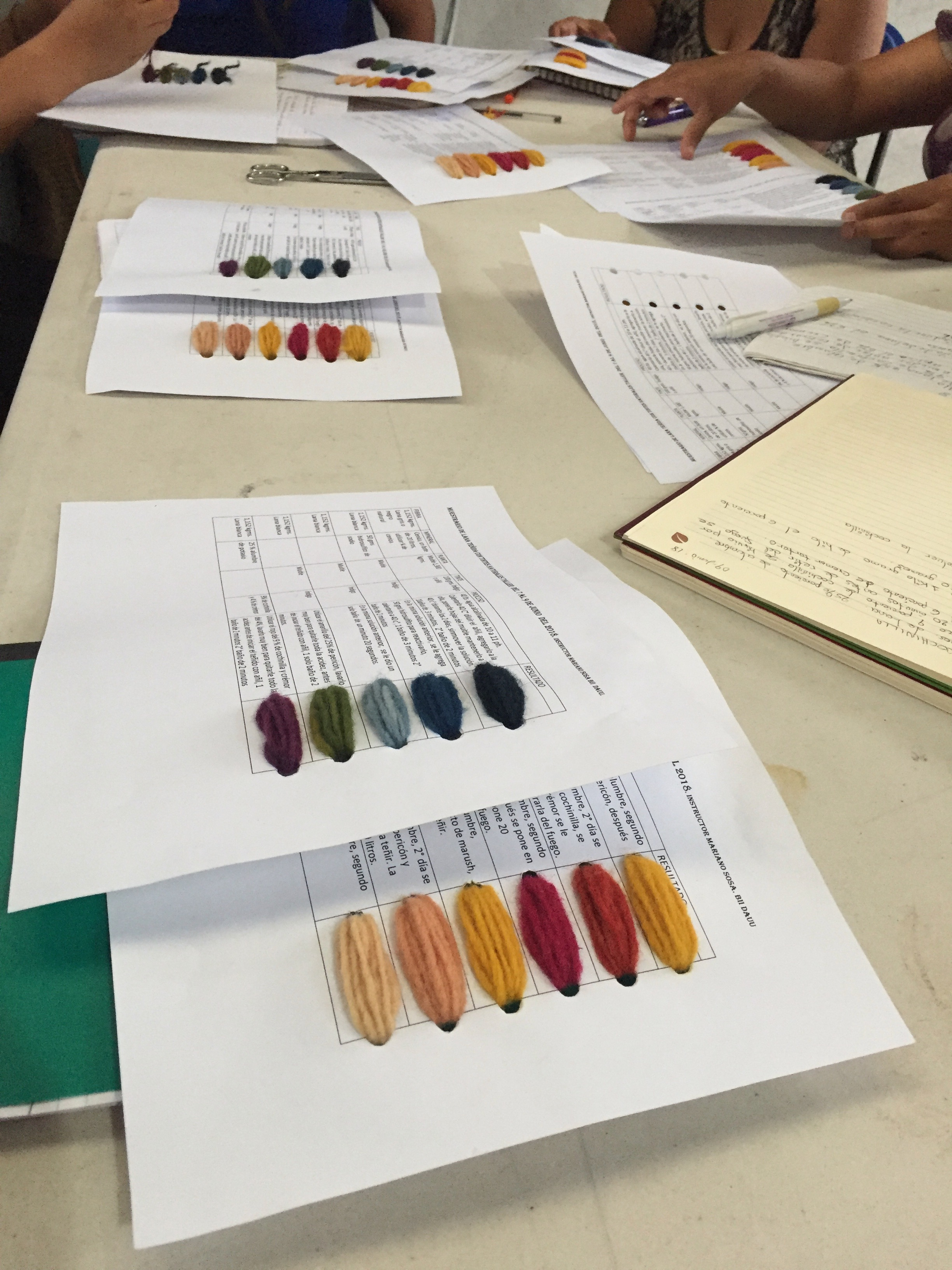 the colours from natural dyes
